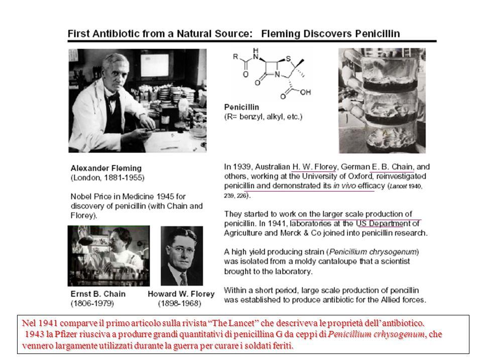 """Nel 1941 comparve il primo articolo sulla rivista """"The Lancet"""" che descriveva le proprietà dell'antibiotico. 1943 la Pfizer riusciva a produrre grandi"""