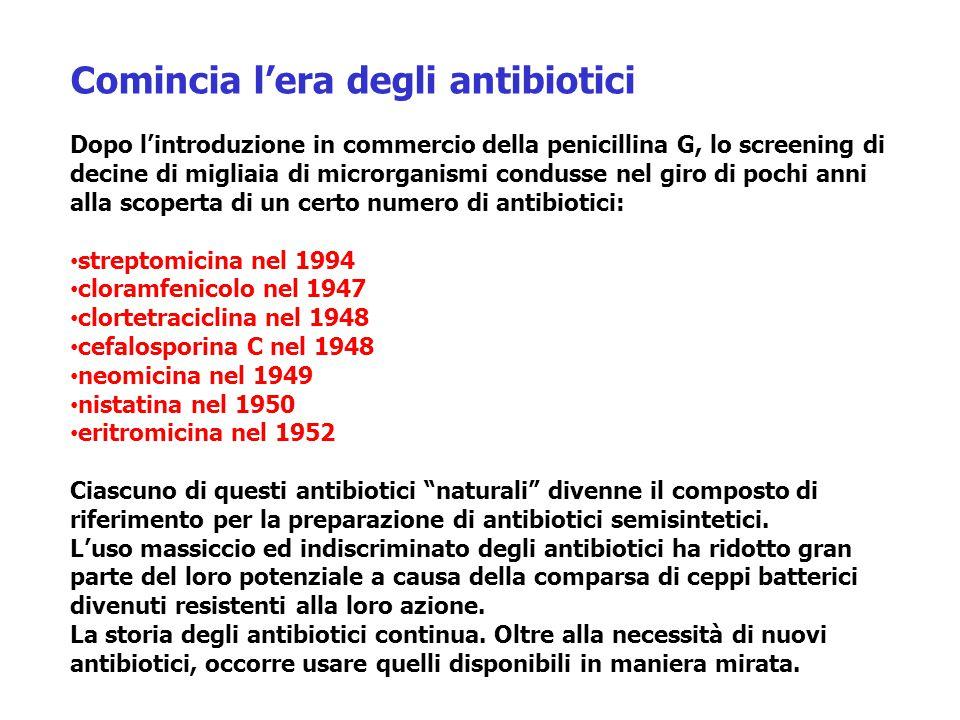 http://www.microbiologia.unige.it/dpb/indexxx.htm Introduzione agli agenti antibatterici Prospetto storico prima del 1935: trattamento delle infezioni senza speranza 1900 P.Ehrlich concetto di tossicità selettiva 1929 Fleming penicillina (P.notatum) G+ (beta-lattamici) 1935 Domagk dimostra attività antibatterica di prontosil 1936 Trofouel il principio attivo di prontosil è la sulfanilamide 1940 Florey primo uso terapeutico della penicillina 1944 Waksman Streptomicina G- (aminoglicosidi) 1947 Cloramfenicolo ampio spettro 1948 Clorotetraciclina ampio spettro 1952 Eritromicina G+ (macrolidi) 1956 introduzione della vancomicina per pen-R SA 1962 Acido nalidixico G- (chinoloni) 1970 oxazolidinoni