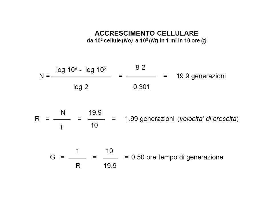 ACCRESCIMENTO CELLULARE da 10 2 cellule (No) a 10 8 (Nt) in 1 ml in 10 ore (t) N = log 10 8 - log 10 2 log 2 == 8-2 0.301 19.9 generazioni R= N t = 19