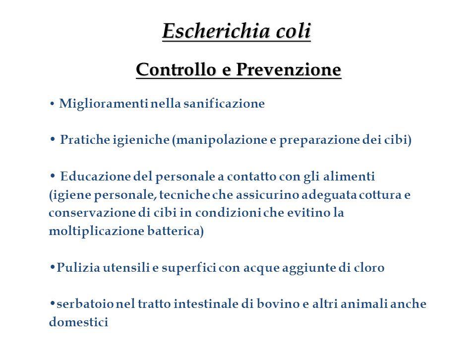 Escherichia coli Controllo e Prevenzione Miglioramenti nella sanificazione Pratiche igieniche (manipolazione e preparazione dei cibi) Educazione del p