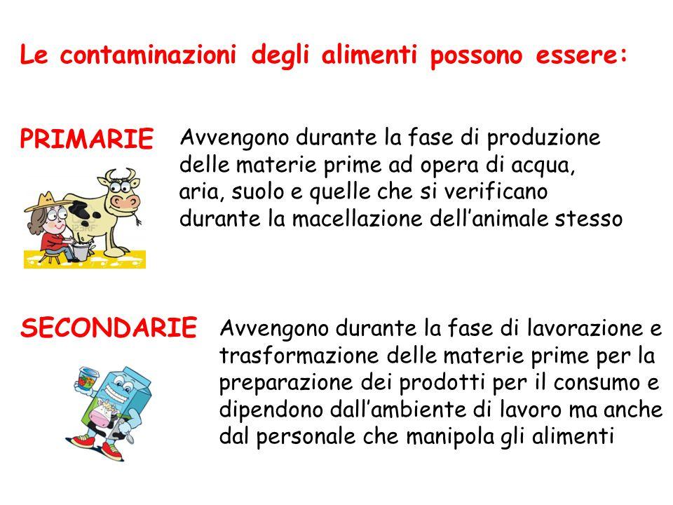 Le contaminazioni degli alimenti possono essere: PRIMARIE SECONDARIE Avvengono durante la fase di lavorazione e trasformazione delle materie prime per