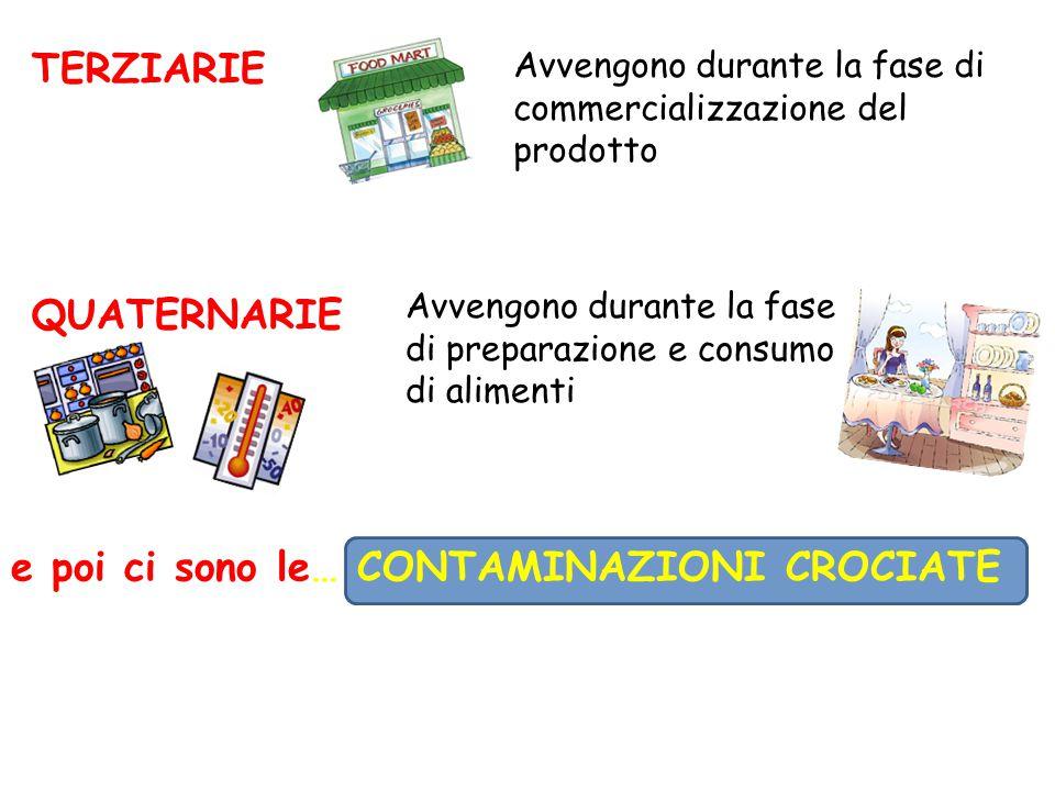 TERZIARIE QUATERNARIE Avvengono durante la fase di commercializzazione del prodotto Avvengono durante la fase di preparazione e consumo di alimenti e