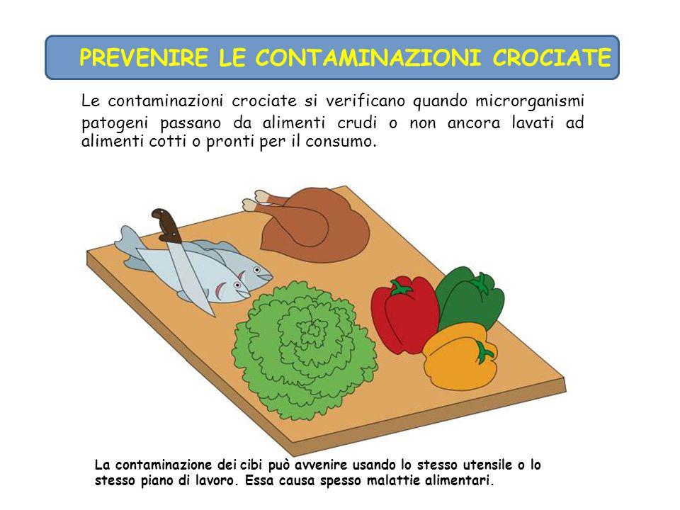 Le contaminazioni crociate si verificano quando microrganismi patogeni passano da alimenti crudi o non ancora lavati ad alimenti cotti o pronti per il