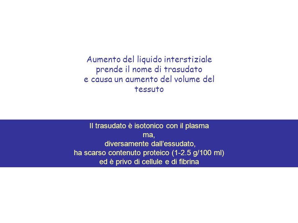 Aumento del liquido interstiziale prende il nome di trasudato e causa un aumento del volume del tessuto Il trasudato è isotonico con il plasma ma, div