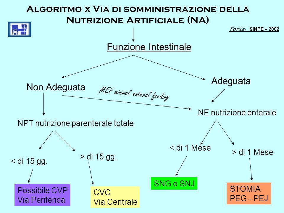 Algoritmo x Via di somministrazione della Nutrizione Artificiale (NA) Funzione Intestinale Non Adeguata Adeguata NE nutrizione enterale < di 1 Mese >
