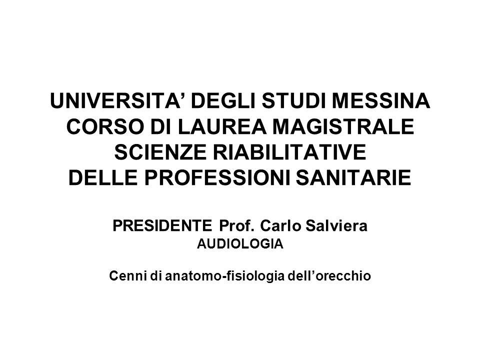 UNIVERSITA' DEGLI STUDI MESSINA CORSO DI LAUREA MAGISTRALE SCIENZE RIABILITATIVE DELLE PROFESSIONI SANITARIE PRESIDENTE Prof. Carlo Salviera AUDIOLOGI