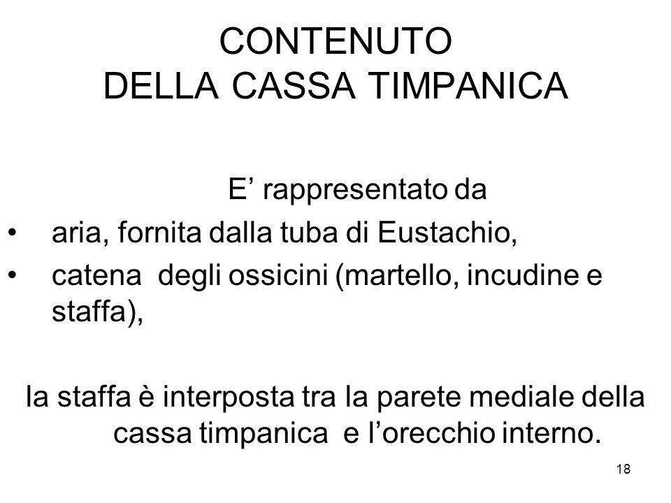 18 CONTENUTO DELLA CASSA TIMPANICA E' rappresentato da aria, fornita dalla tuba di Eustachio, catena degli ossicini (martello, incudine e staffa), la