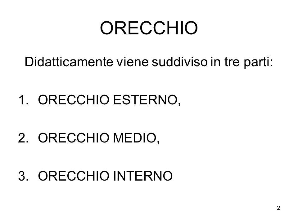 2 ORECCHIO Didatticamente viene suddiviso in tre parti: 1.ORECCHIO ESTERNO, 2.ORECCHIO MEDIO, 3.ORECCHIO INTERNO