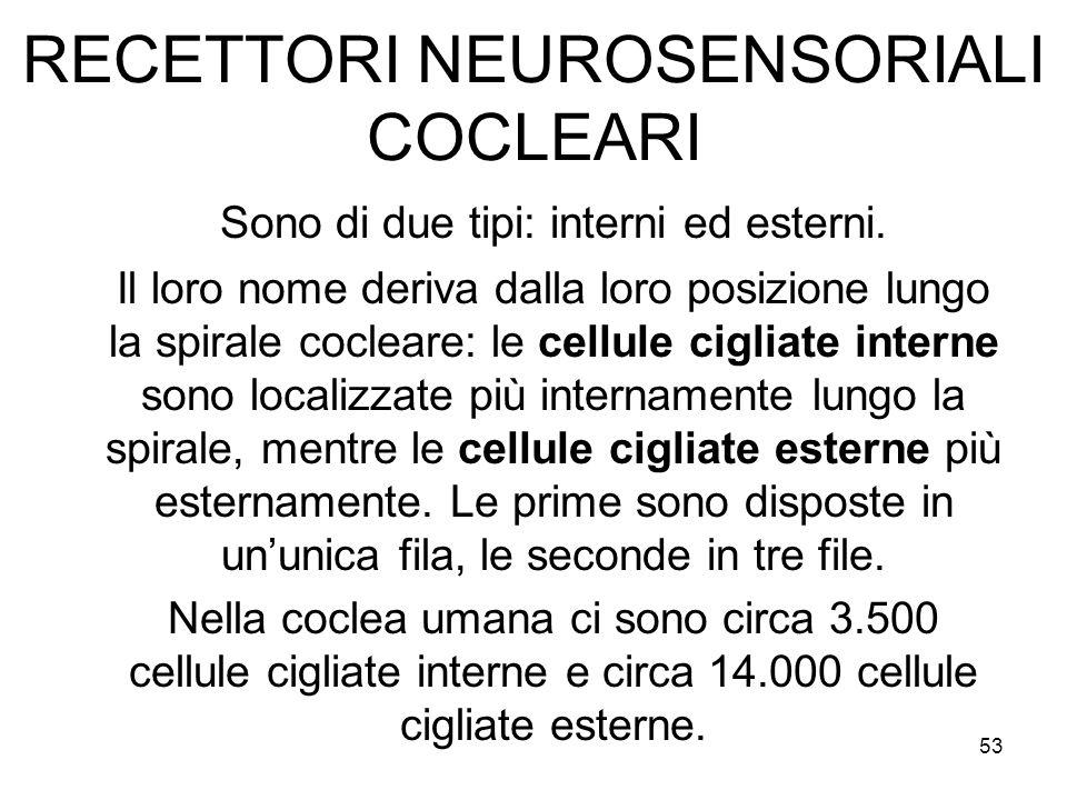 RECETTORI NEUROSENSORIALI COCLEARI Sono di due tipi: interni ed esterni. Il loro nome deriva dalla loro posizione lungo la spirale cocleare: le cellul