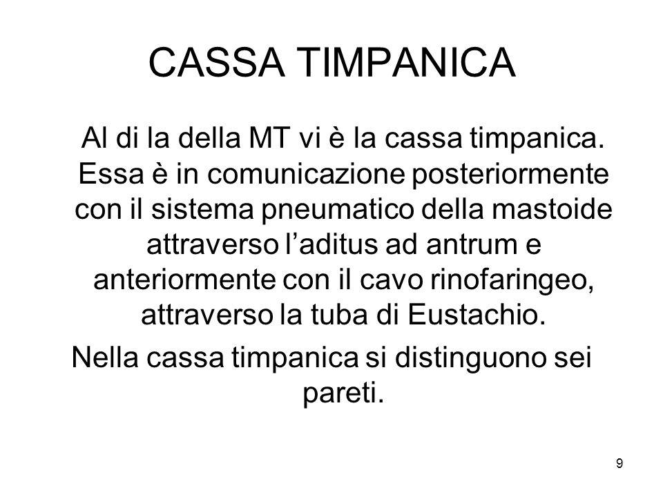 9 CASSA TIMPANICA Al di la della MT vi è la cassa timpanica. Essa è in comunicazione posteriormente con il sistema pneumatico della mastoide attravers