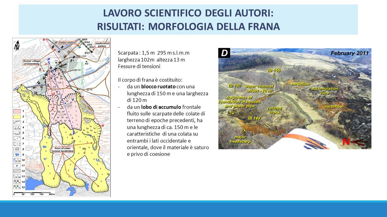 LAVORO SCIENTIFICO DEGLI AUTORI: RISULTATI: MORFOLOGIA DELLA FRANA Scarpata : 1,5 m 295 m s.l.m.m larghezza 102m altezza 13 m Fessure di tensioni Il c