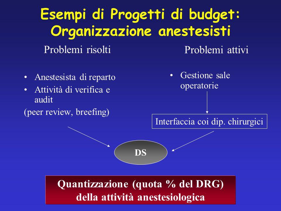 Esempi di Progetti di budget: Organizzazione anestesisti Problemi risolti Anestesista di reparto Attività di verifica e audit (peer review, breefing) Problemi attivi Gestione sale operatorie Interfaccia coi dip.