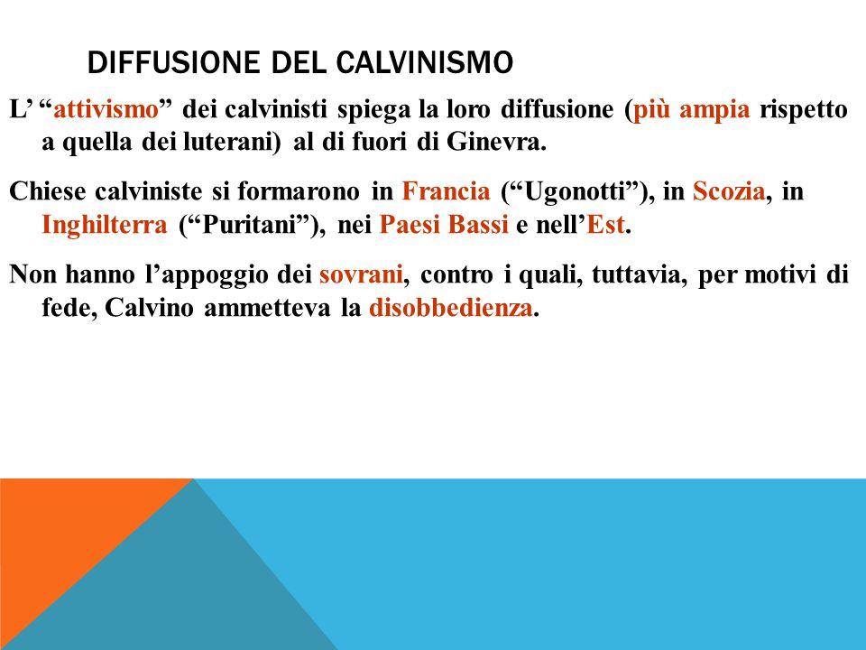 DIFFUSIONE DEL CALVINISMO L' attivismo dei calvinisti spiega la loro diffusione (più ampia rispetto a quella dei luterani) al di fuori di Ginevra.