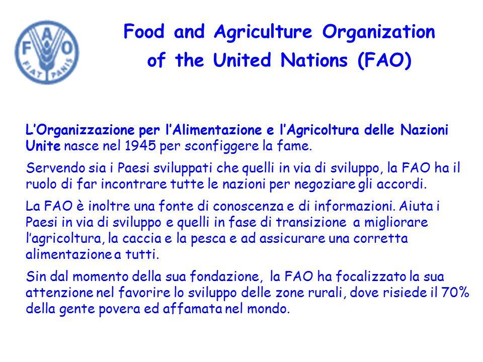 Food and Agriculture Organization of the United Nations (FAO) L'Organizzazione per l'Alimentazione e l'Agricoltura delle Nazioni Unite nasce nel 1945 per sconfiggere la fame.