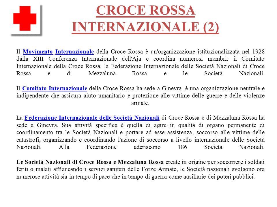 CROCE ROSSA INTERNAZIONALE (2) Il Movimento Internazionale della Croce Rossa è un organizzazione istituzionalizzata nel 1928 dalla XIII Conferenza Internazionale dell Aja e coordina numerosi membri: il Comitato Internazionale della Croce Rossa, la Federazione Internazionale delle Società Nazionali di Croce Rossa e di Mezzaluna Rossa e le Società Nazionali.