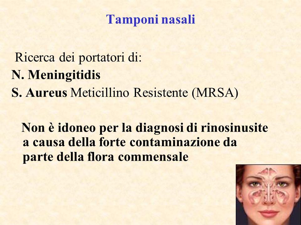 Tamponi nasali Ricerca dei portatori di: N. Meningitidis S. Aureus Meticillino Resistente (MRSA) Non è idoneo per la diagnosi di rinosinusite a causa