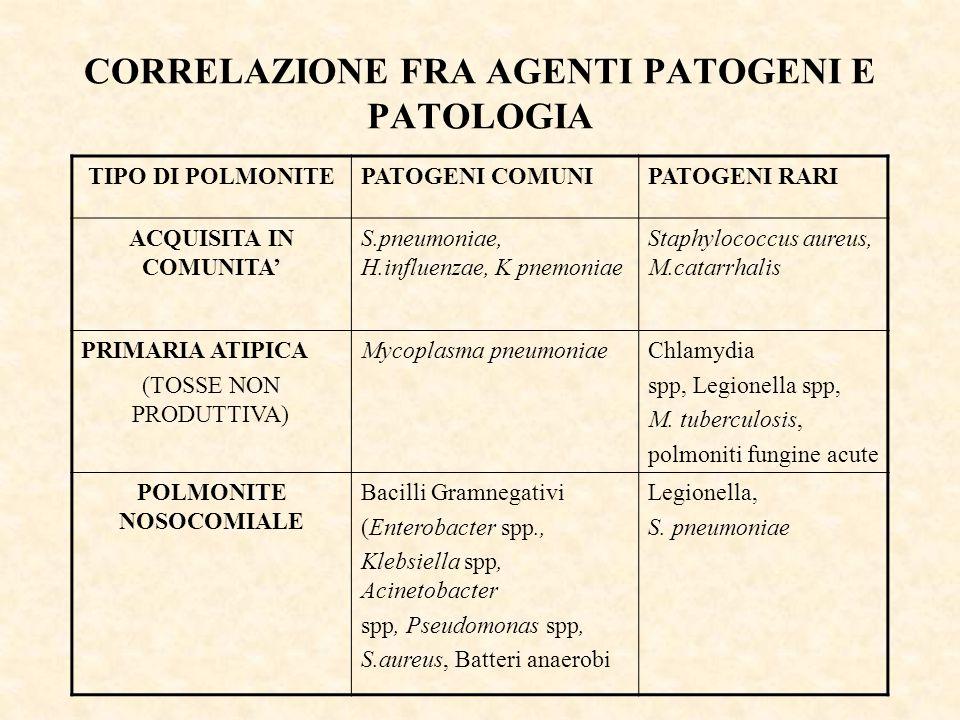 CORRELAZIONE FRA AGENTI PATOGENI E PATOLOGIA TIPO DI POLMONITEPATOGENI COMUNIPATOGENI RARI ACQUISITA IN COMUNITA' S.pneumoniae, H.influenzae, K pnemon