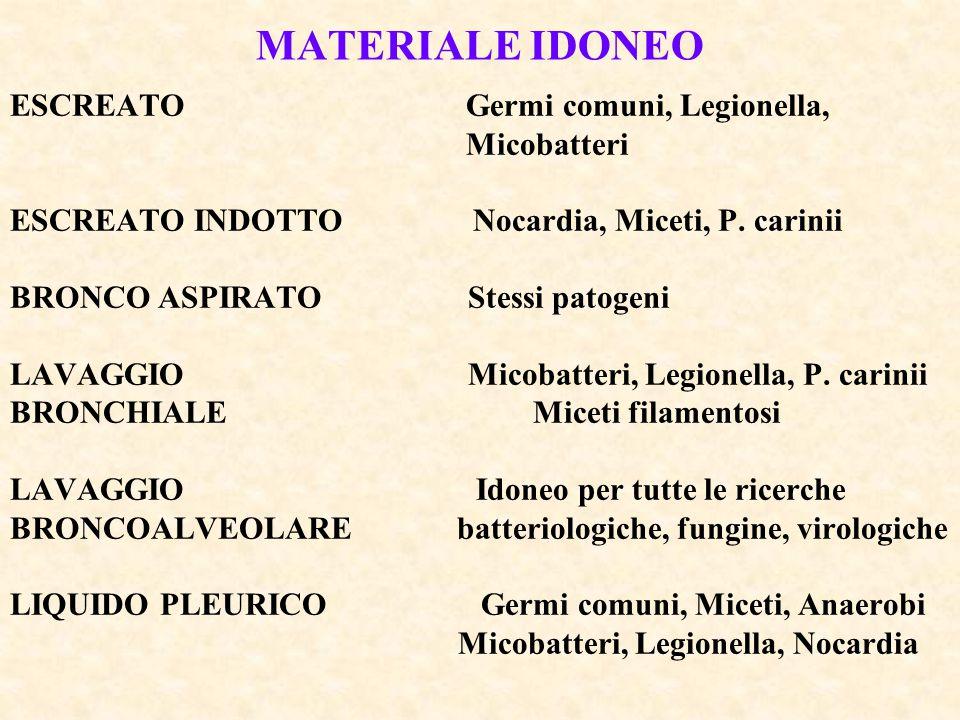 MATERIALE IDONEO ESCREATO Germi comuni, Legionella, Micobatteri ESCREATO INDOTTO Nocardia, Miceti, P. carinii BRONCO ASPIRATO Stessi patogeni LAVAGGIO