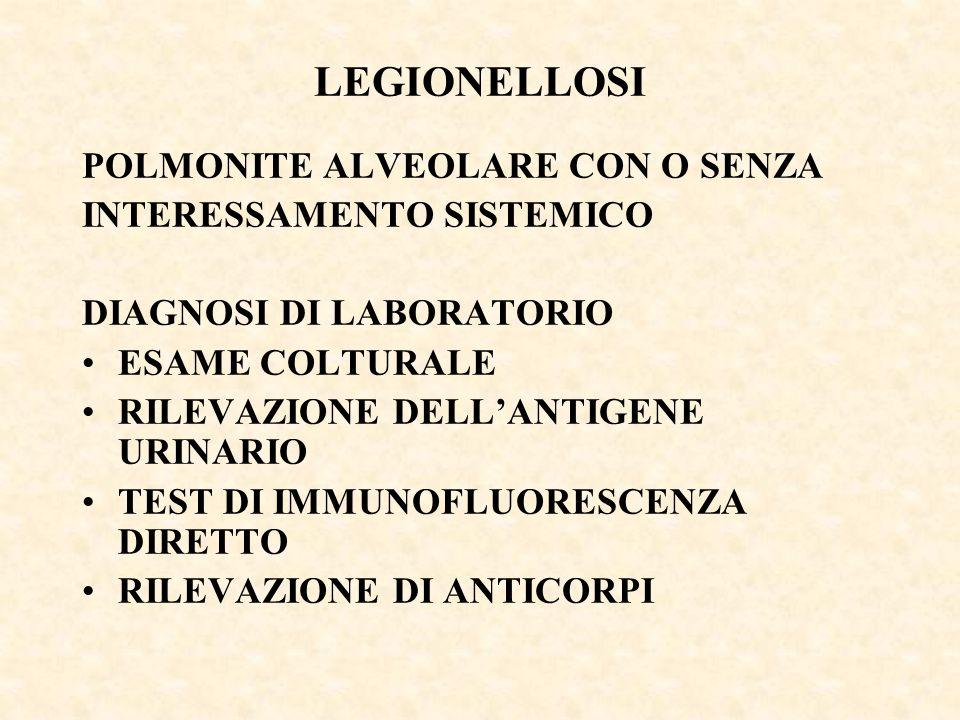 LEGIONELLOSI POLMONITE ALVEOLARE CON O SENZA INTERESSAMENTO SISTEMICO DIAGNOSI DI LABORATORIO ESAME COLTURALE RILEVAZIONE DELL'ANTIGENE URINARIO TEST