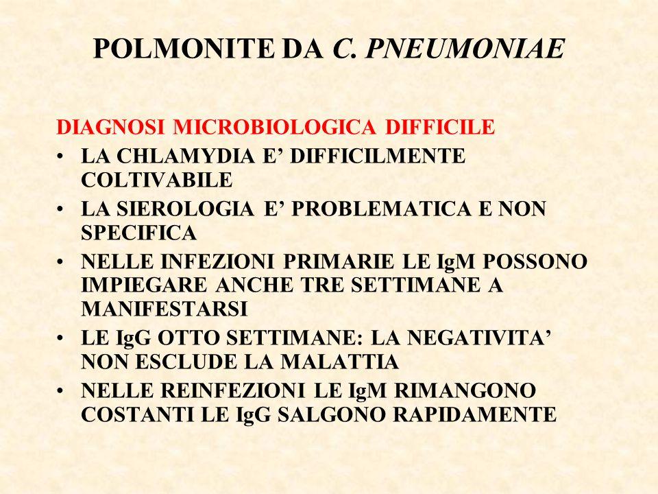 POLMONITE DA C. PNEUMONIAE DIAGNOSI MICROBIOLOGICA DIFFICILE LA CHLAMYDIA E' DIFFICILMENTE COLTIVABILE LA SIEROLOGIA E' PROBLEMATICA E NON SPECIFICA N