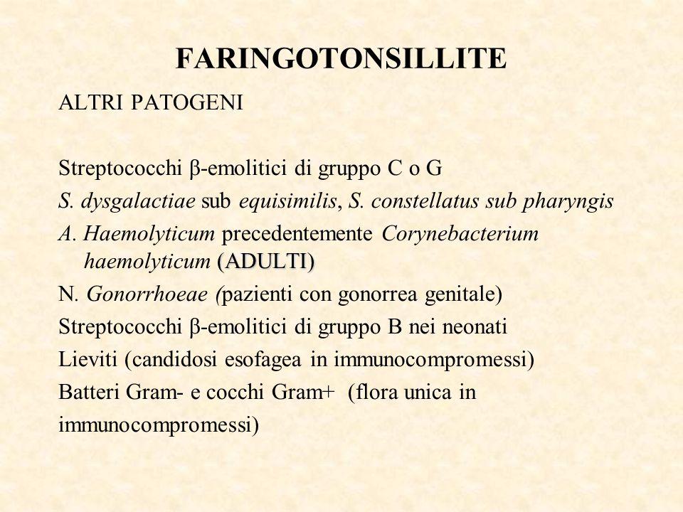 FARINGOTONSILLITE ALTRI PATOGENI Streptococchi β-emolitici di gruppo C o G S. dysgalactiae sub equisimilis, S. constellatus sub pharyngis (ADULTI) A.