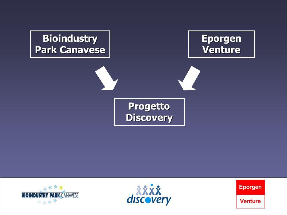 Il progetto Discovery aveva lo scopo di: attrarre progetti da ricercatori italiani attrarre progetti da ricercatori italiani selezionare i progetti più promettenti selezionare i progetti più promettenti dar vita a nuove attività imprenditoriali dar vita a nuove attività imprenditoriali
