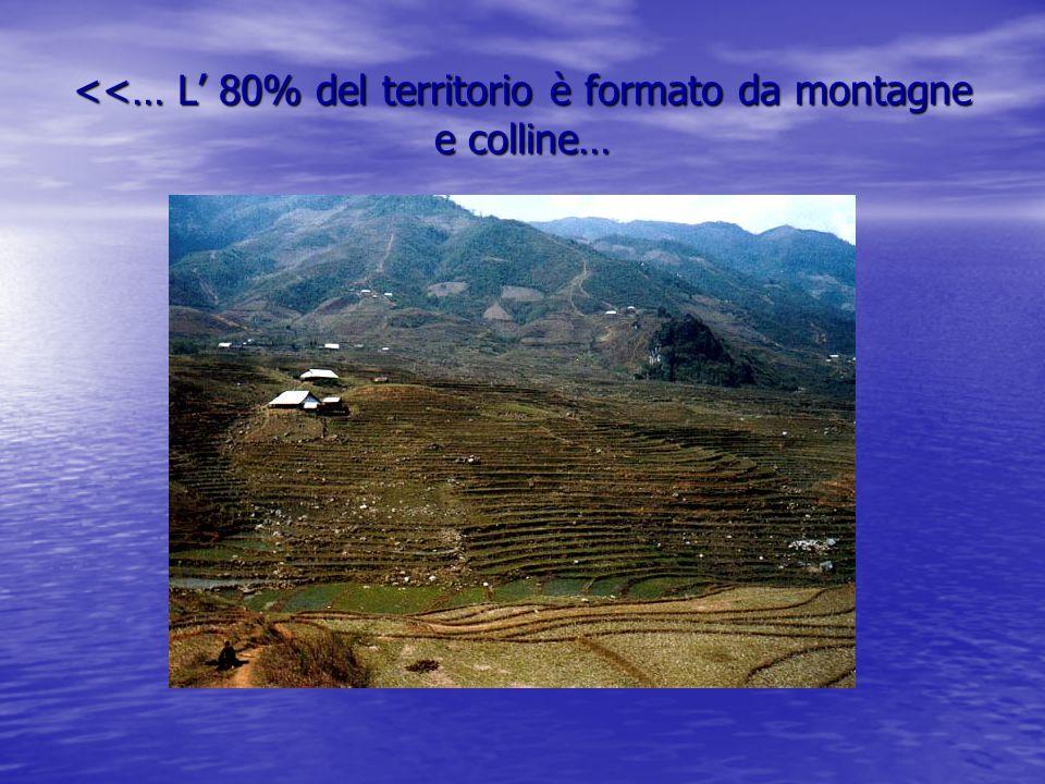 <<… L' 80% del territorio è formato da montagne e colline…