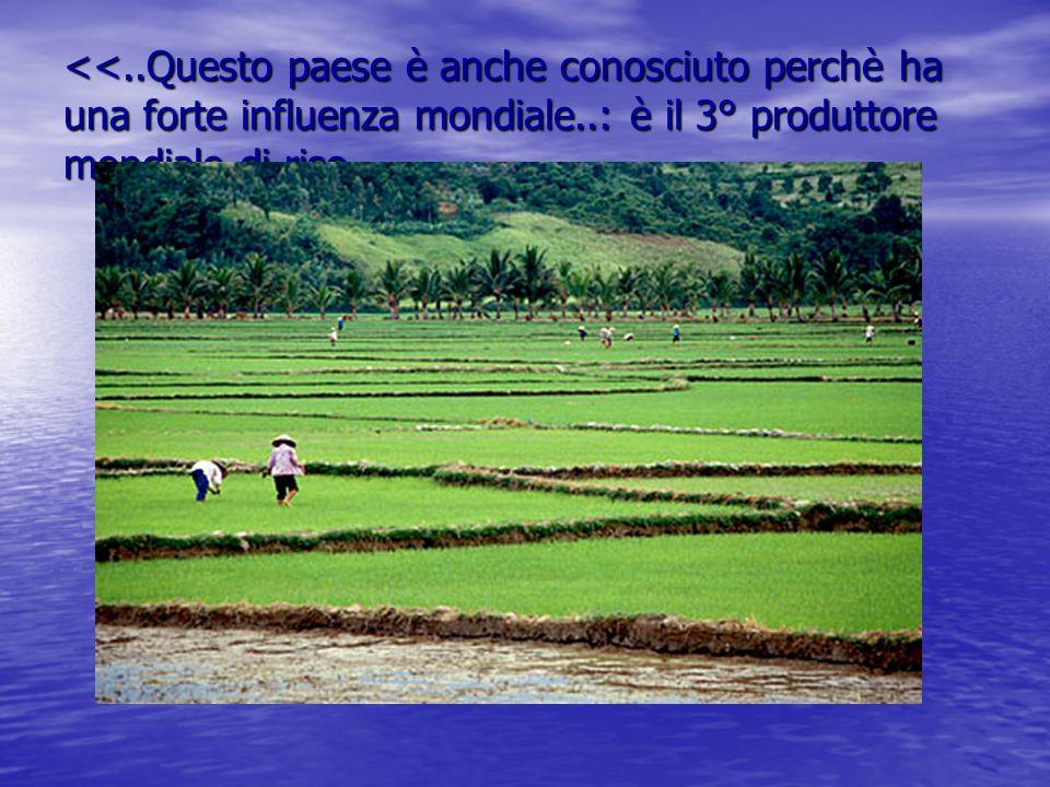 <<..Questo paese è anche conosciuto perchè ha una forte influenza mondiale..: è il 3° produttore mondiale di riso,