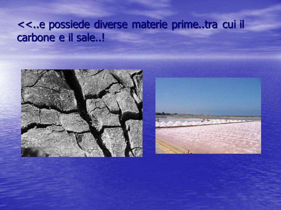 <<..e possiede diverse materie prime..tra cui il carbone e il sale..!