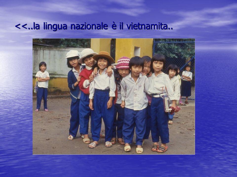 <<..la lingua nazionale è il vietnamita..