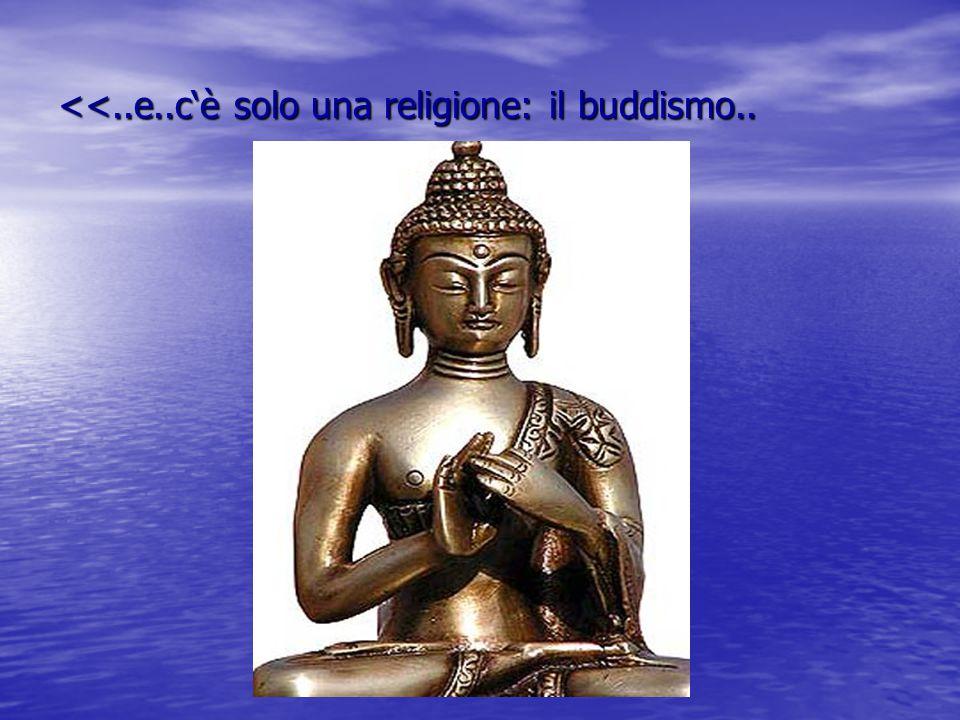 <<..e..c'è solo una religione: il buddismo..
