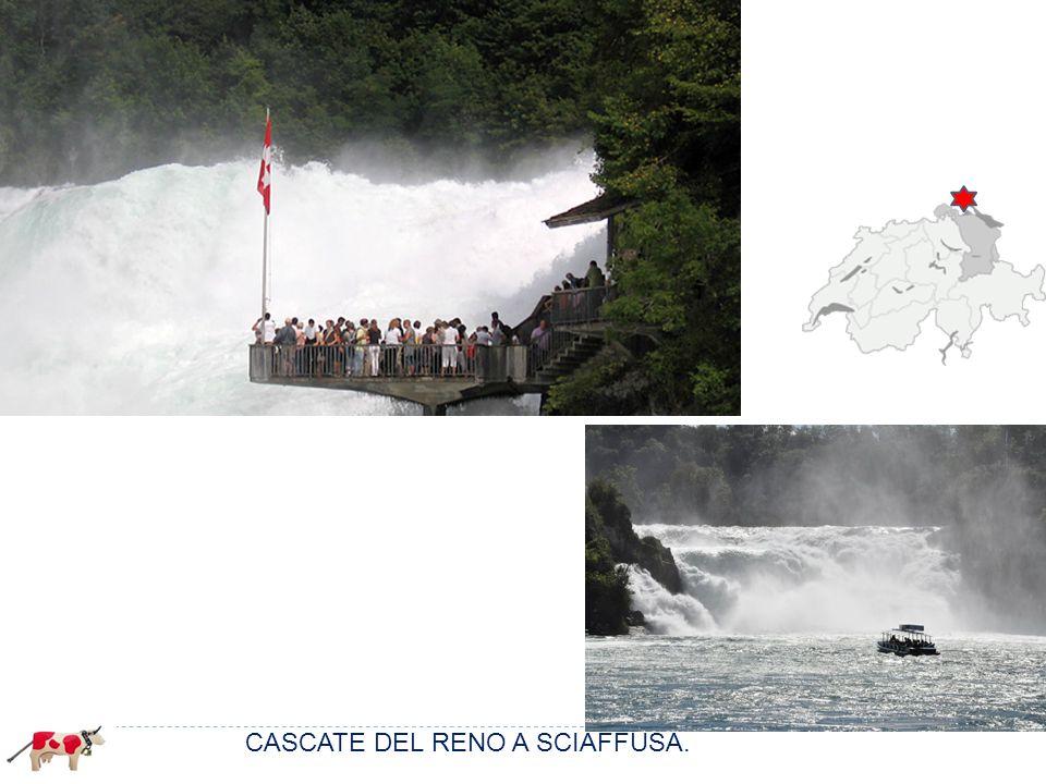 Cervino 4478 Monte Rosa 4637 m. Finsteraarhorn 4274 m. Bernina 4050 m. CASCATE DEL RENO A SCIAFFUSA.