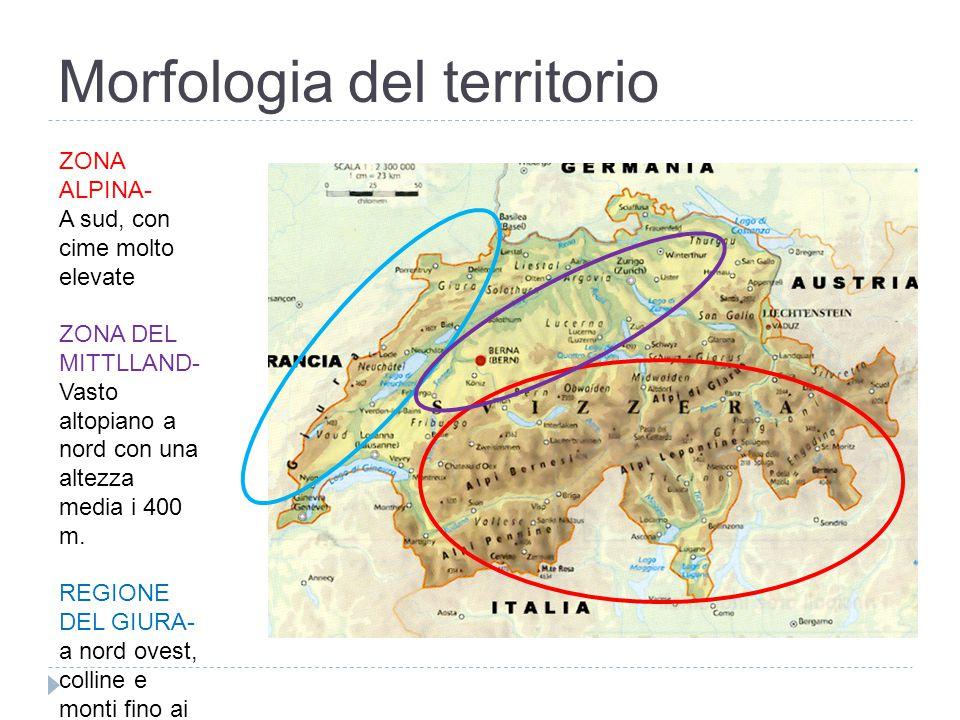 Morfologia del territorio ZONA ALPINA- A sud, con cime molto elevate ZONA DEL MITTLLAND- Vasto altopiano a nord con una altezza media i 400 m. REGIONE