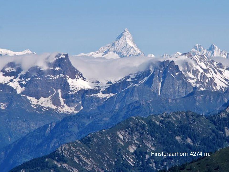 Cervino 4478 Monte Rosa 4637 m. Finsteraarhorn 4274 m.