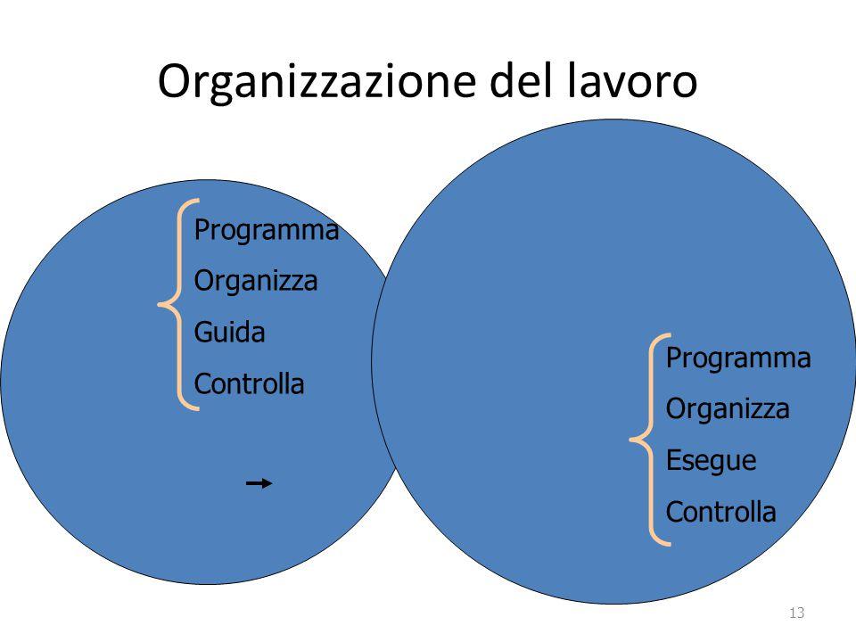 Organizzazione del lavoro Capo Lavoratore esegue Capo Lavoratore 13 Programma Organizza Guida Controlla Programma Organizza Esegue Controlla