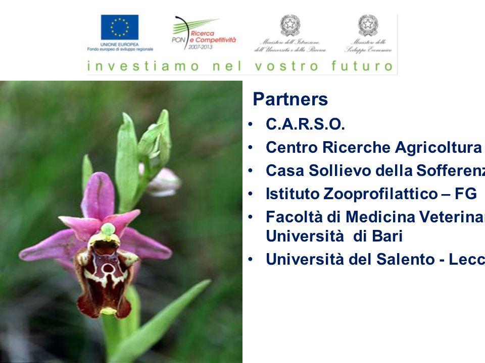 Partners C.A.R.S.O. Centro Ricerche Agricoltura Casa Sollievo della Sofferenza Istituto Zooprofilattico – FG Facoltà di Medicina Veterinaria Universit