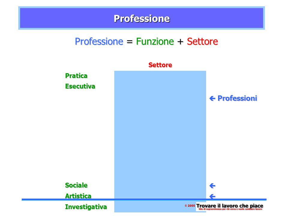 ProfessioneProfessione Professione Professione = Funzione Funzione + SettoreSettorePratica Esecutiva ManagerialeManagerialeManagerialeManageriale  Professioni Sociale Artistica Investigativa © 2005