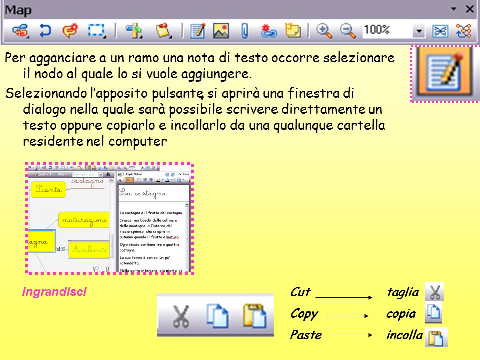 Per agganciare a un ramo una nota di testo occorre selezionare il nodo al quale lo si vuole aggiungere. Selezionando l'apposito pulsante si aprirà una