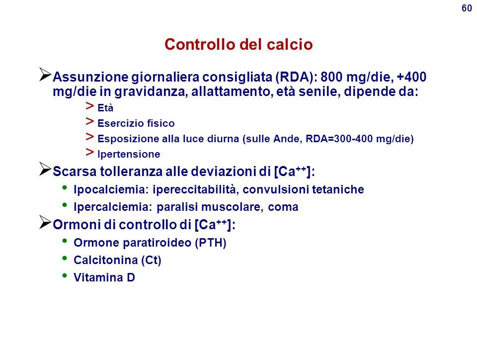 59 Intestino Liquido extracellulare 22 mmoli Plasma 9 mmoli Ossa 25 000 mmoli Rene Dieta 25 Filtrazione 240 Riassorbimento 234 Urine 6 Feci 19 Assorbi