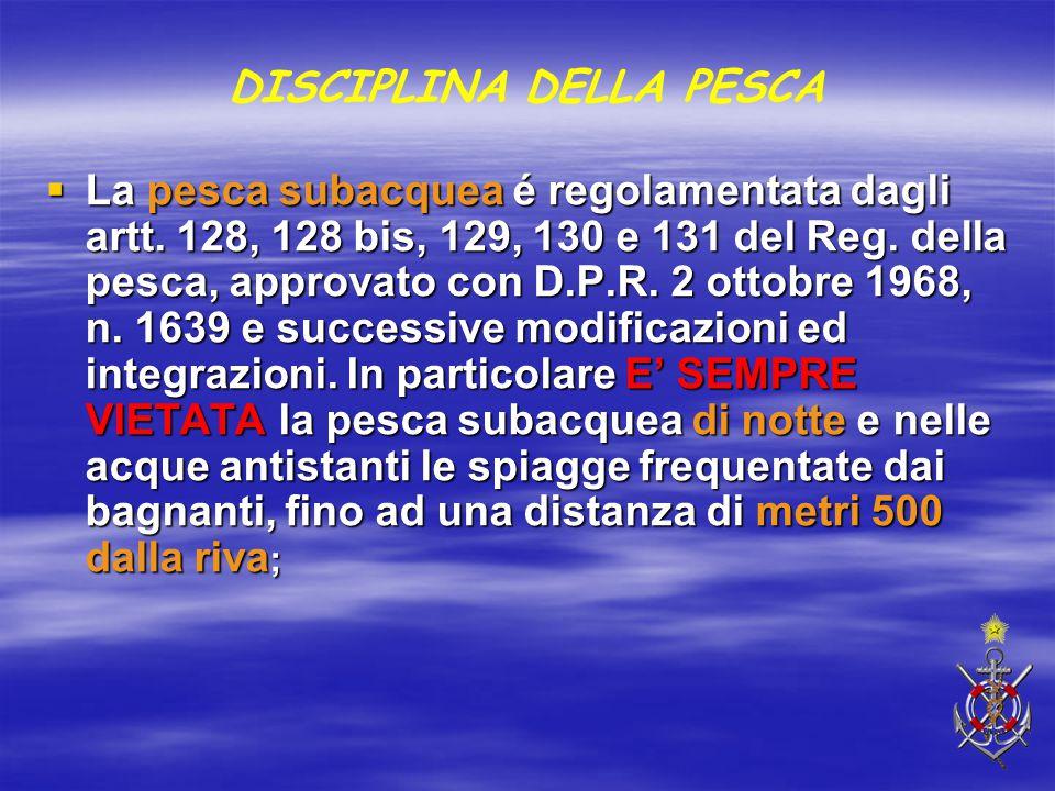 DISCIPLINA DELLA PESCA  La pesca subacquea é regolamentata dagli artt. 128, 128 bis, 129, 130 e 131 del Reg. della pesca, approvato con D.P.R. 2 otto