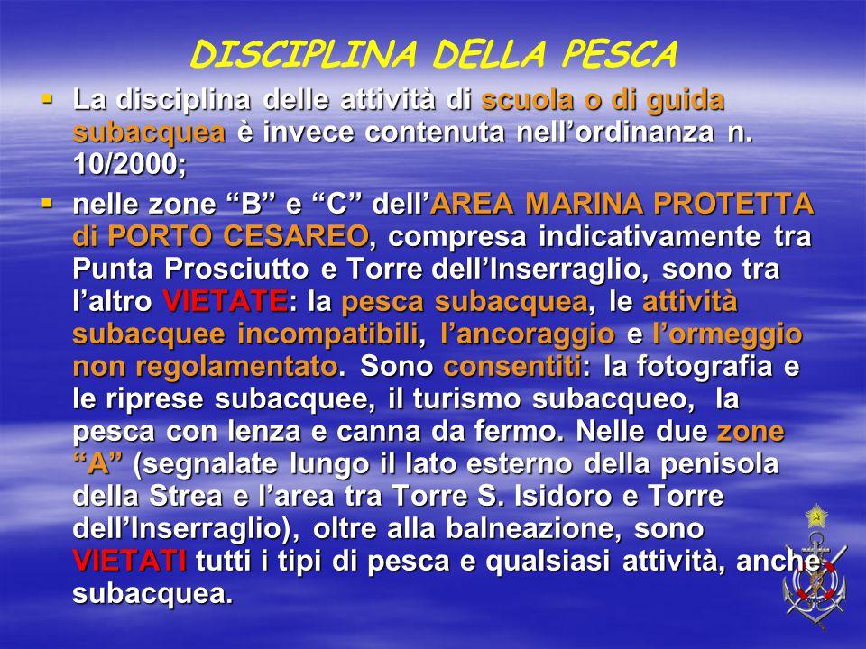 """DISCIPLINA DELLA PESCA  La disciplina delle attività di scuola o di guida subacquea è invece contenuta nell'ordinanza n. 10/2000;  nelle zone """"B"""" e"""