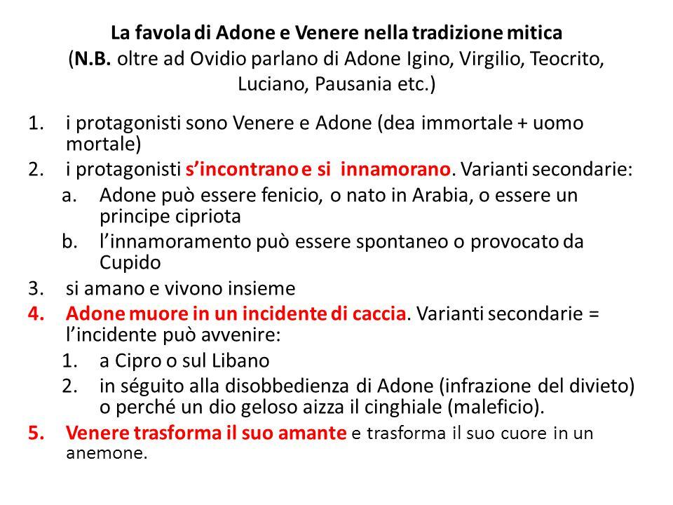 La favola di Adone e Venere nella tradizione mitica (N.B. oltre ad Ovidio parlano di Adone Igino, Virgilio, Teocrito, Luciano, Pausania etc.) 1.i prot