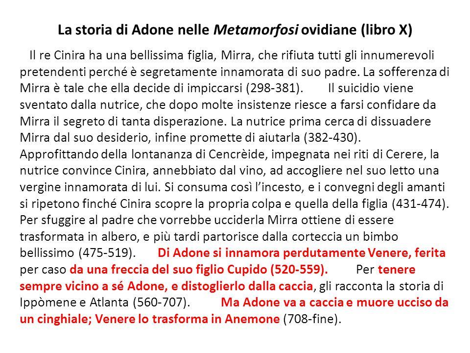 La storia di Adone nelle Metamorfosi ovidiane (libro X) Il re Cinira ha una bellissima figlia, Mirra, che rifiuta tutti gli innumerevoli pretendenti p