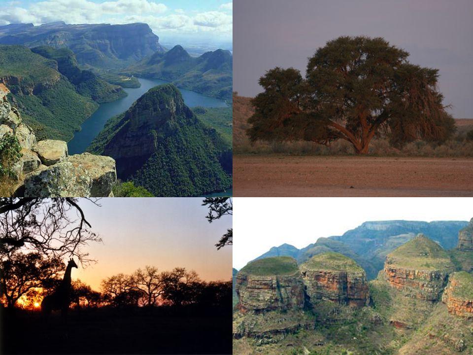«Ho la sensazione che i paesaggi e gli orizzonti sconfinati dell Africa, insieme agli avvenimenti che hanno avuto luogo in questo continente secoli fa, mi aiutino a esprimere appieno l amore e l entusiasmo che provo per la vita e per l avventura.» Wilbur Smith