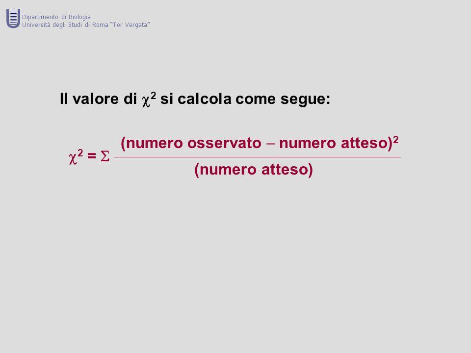 GENOTIPO +/++/--/- totale Numero di individui16282064 Numero di alleli +3228 060 Numero di alleli - 0284068 Somma degli alleli + e -325640 128 Frequenza allelica di + = 60/128 = 0.469 = p Frequenza allelica di - = 68/128 = 0.531 = q Frequenza attesap 2 2pqq 2 relativa 0.220 0.498 0.282 1 Frequenza attesa assoluta 14.1 31.9 18.064 (ottenuta come proporzione es: 0.220 :1= x :64 x = 0.220 x 64 = 14.1 Valore di  2 [(A - O) 2 /A] 0.256 0.477 0.222 0.955 Gradi di libertà  3 - 1 - 1 = 1 U Dipartimento di Biologia Università degli Studi di Roma Tor Vergata