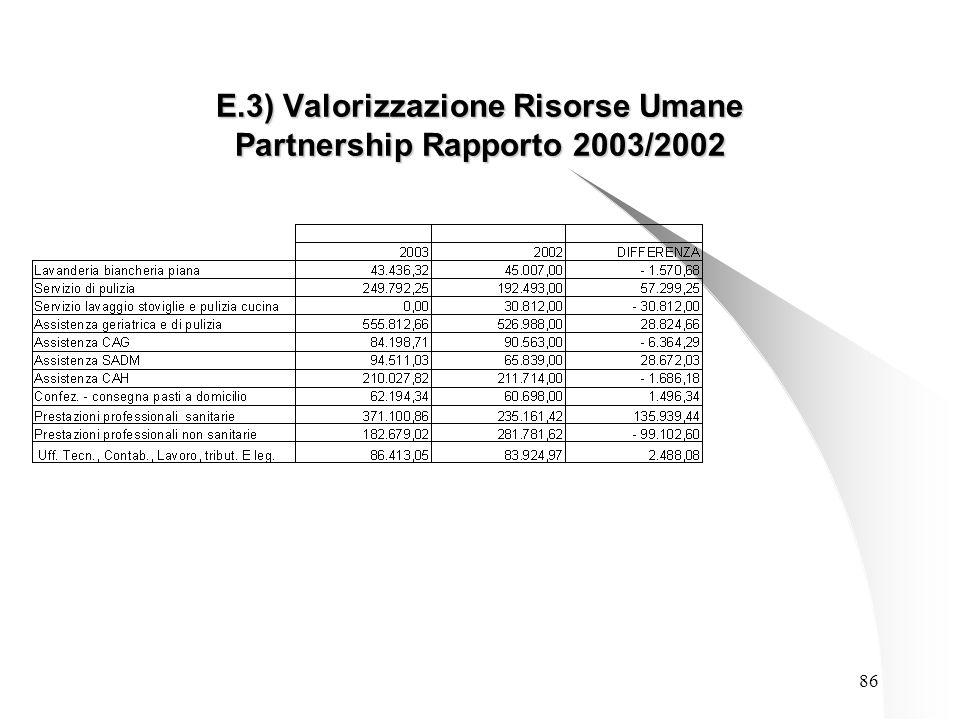 86 E.3) Valorizzazione Risorse Umane Partnership Rapporto 2003/2002