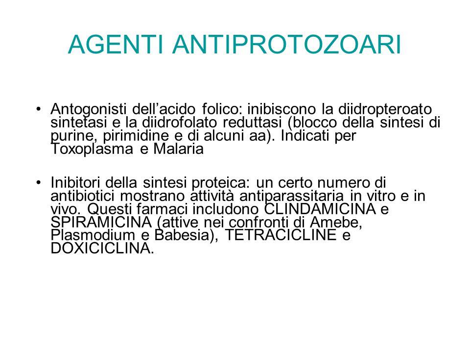 AGENTI ANTIPROTOZOARI Antogonisti dell'acido folico: inibiscono la diidropteroato sintetasi e la diidrofolato reduttasi (blocco della sintesi di purine, pirimidine e di alcuni aa).