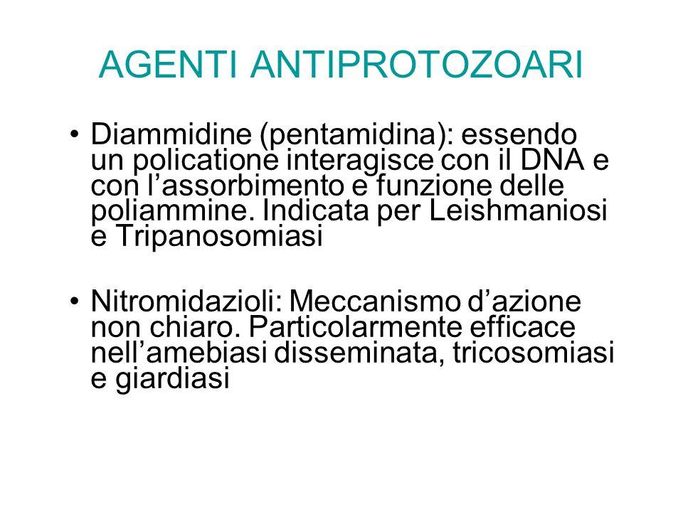 AGENTI ANTIPROTOZOARI Diammidine (pentamidina): essendo un policatione interagisce con il DNA e con l'assorbimento e funzione delle poliammine. Indica