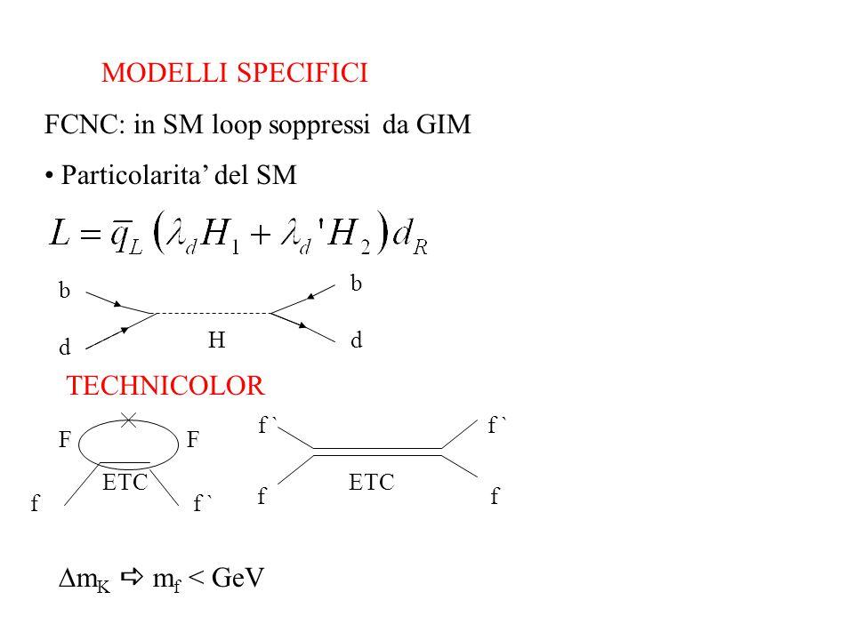 MODELLI SPECIFICI FCNC: in SM loop soppressi da GIM Particolarita' del SM b d b dH TECHNICOLOR FF f f ` f f ETC ETC  m K  m f < GeV