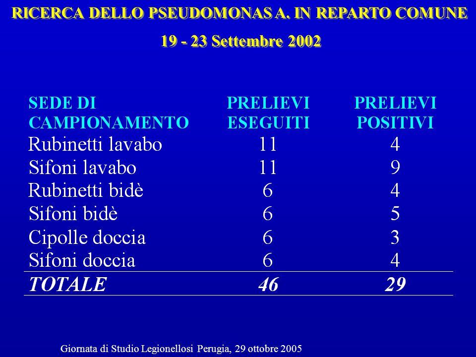 RICERCA DELLO PSEUDOMONAS A. IN REPARTO COMUNE 19 - 23 Settembre 2002 Giornata di Studio Legionellosi Perugia, 29 ottobre 2005